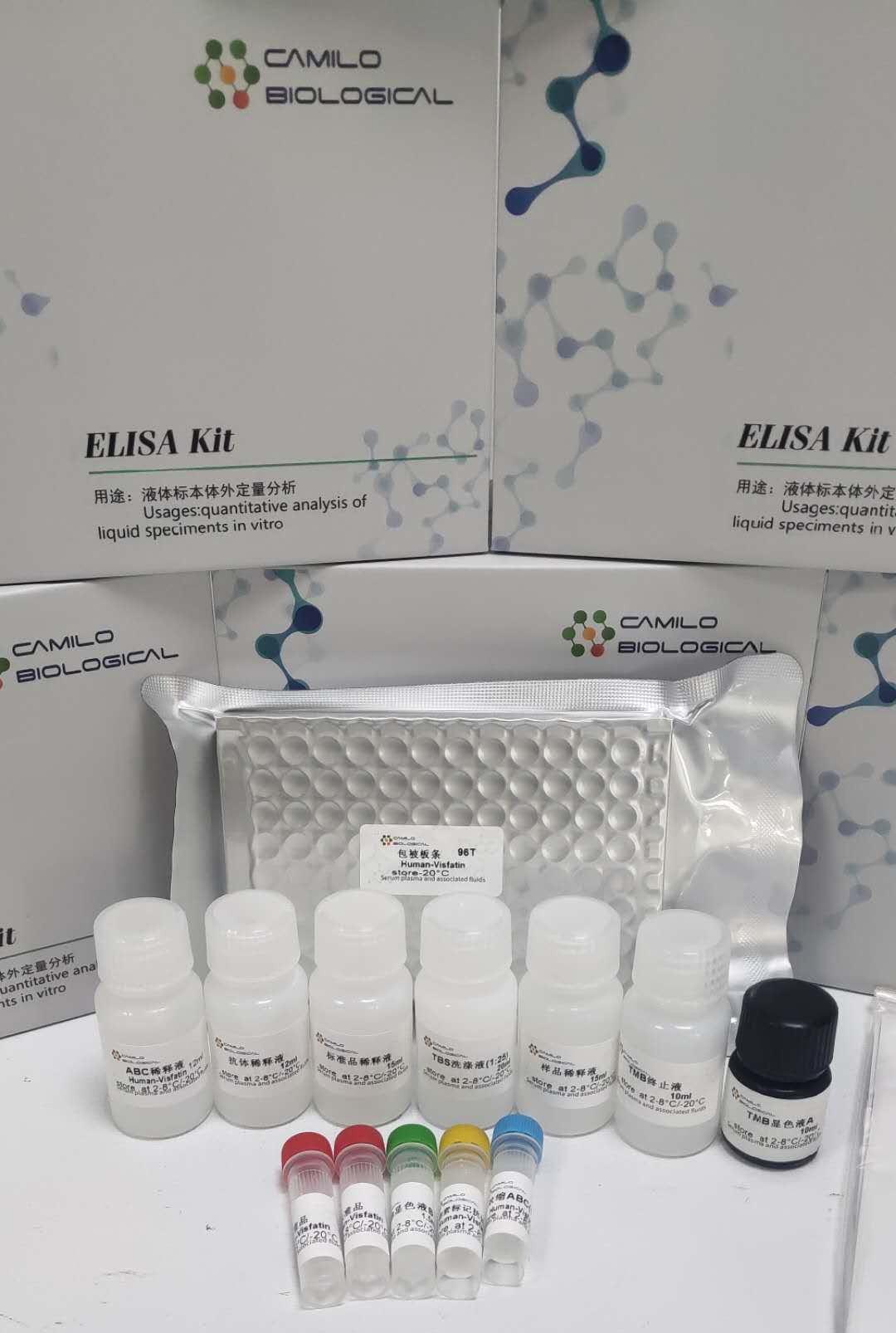 植物硫醇氧化酶(Mercaptan Peroxidase,MP)ELISA 试剂盒