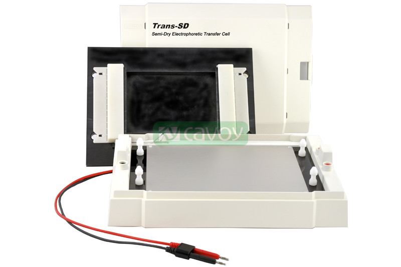 Trans-SD 通用型半干转印电泳系统
