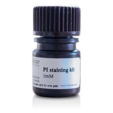 PI染色试剂盒