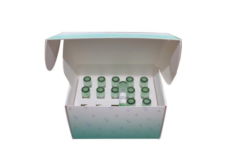 2×Taq PCR MasterMix for PAGE(含染料)